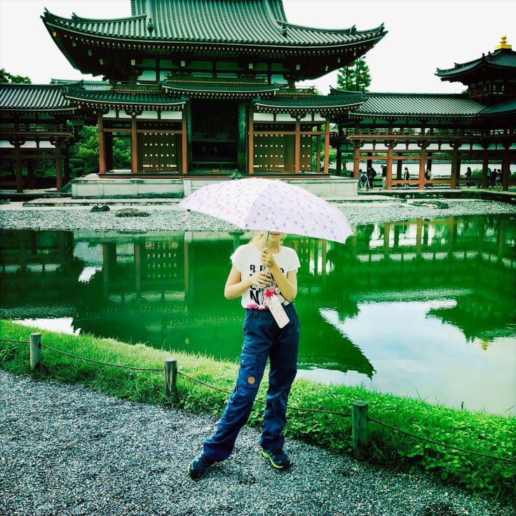Un petit coin de parapluie, contre un coin de paradis..