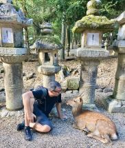 Conversation avec un daim - Nara