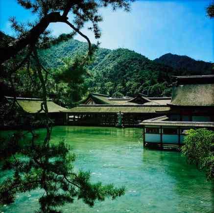 Sanctuaire Shinto - Miyajima