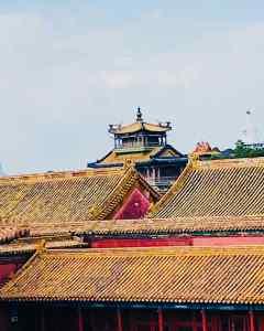 Toits de la Cité Interdite - Pékin - Chine