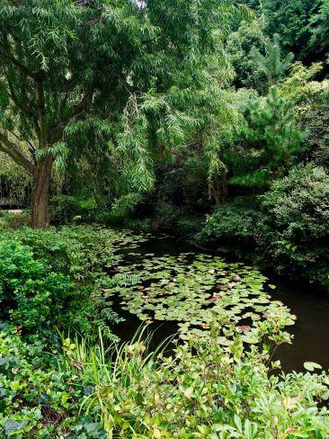 Jardin Japonais du Chichū Museum - Version naturelle des Nimpheas de Monet