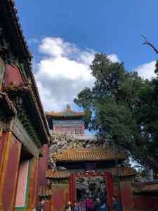 Zoom sur des portes de la Cité Interdite - Pékin - Chine