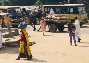 Ranthambore - Scène de rue - Rajasthan - Inde
