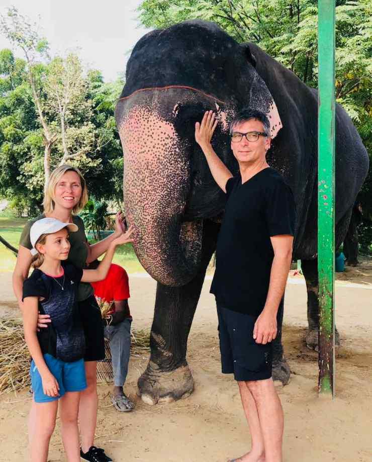 Un éléphant, c'est gros ! - Jaipur - Inde