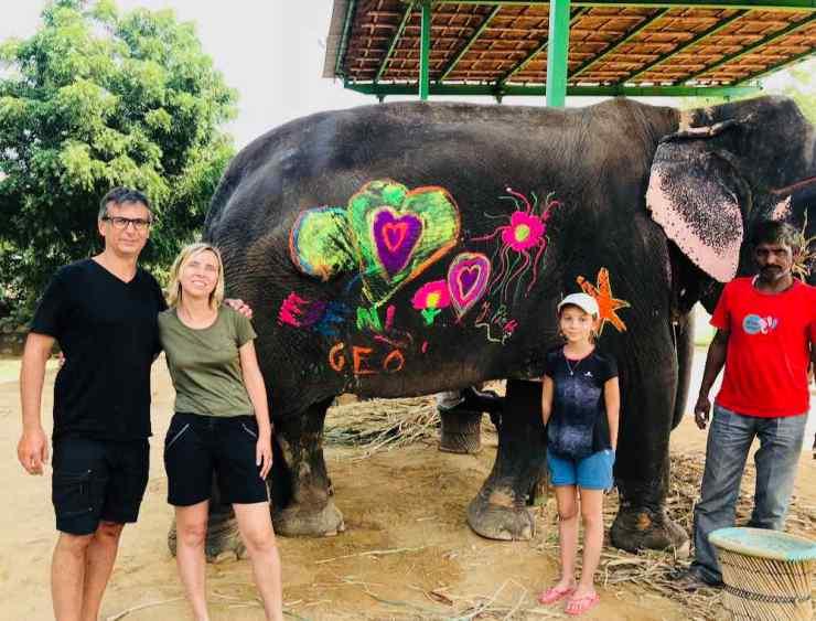 Dessins sur éléphante - Jaipur - Inde