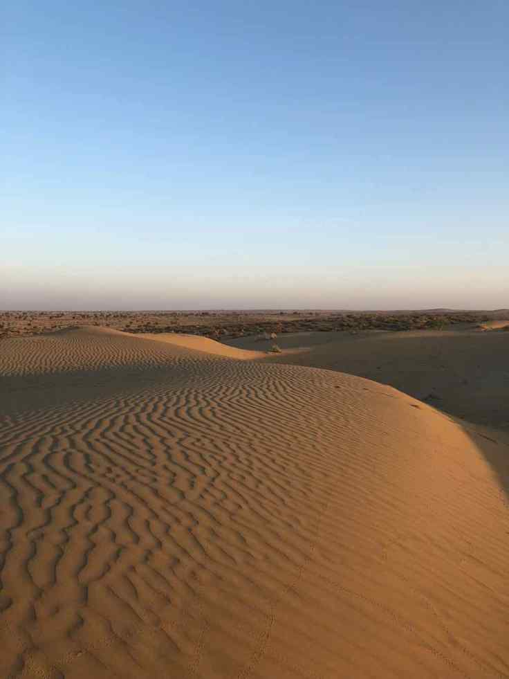 Beauté du désert - Désert du Thar - Rajasthan - Inde