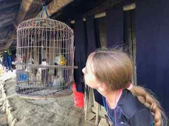 Eden observe les oiseaux- Région de Sapa - Vietnam
