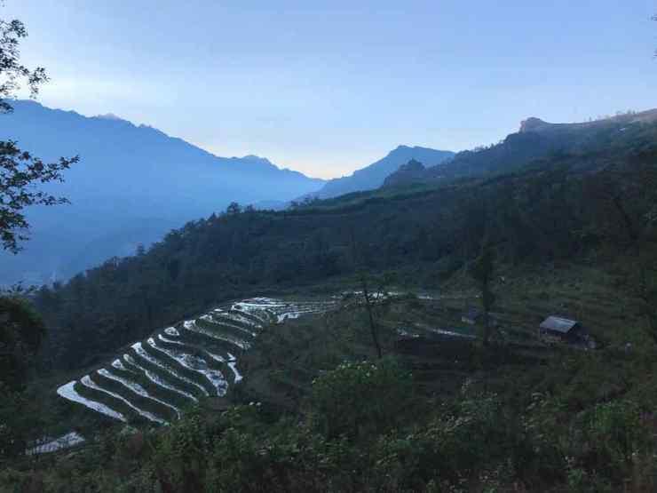 Rizières de Sapa en fin de journée - Vietnam