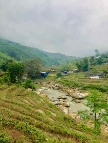 Jolies rizières - Région de Sapa - Vietnam