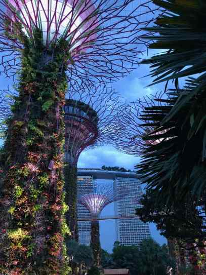 Les Superarbres du Garden By The Bay - Singapour