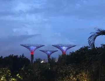 Les Superarbres du Garden By The Bay - Singapour