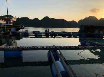 Coucher de soleil sur la Ferme aux poissons - Baie d'Halong - Vietnam