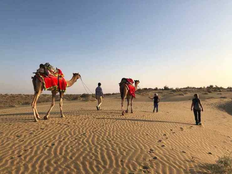 Et c'est moi qui guide le dromadaire ! - Désert du Thar - Rajasthan - Inde