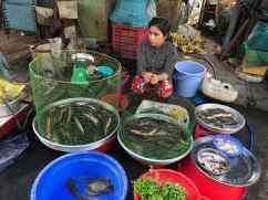 Sur le marché de Can Tho - Vietnam