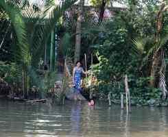 C'est l'heure du bain dans le Mekong - Can Tho - Vietnam