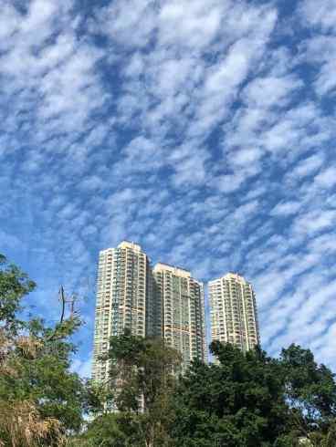 Vue sur les gratte-ciels - Parc de Kowloon - Hong-Kong