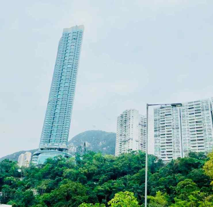 Végétation tropicale et gratte-ciels - Hong-Kong