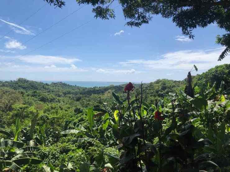 Sur la route Puerto Princesa - El Nido - Palawan - Philippines