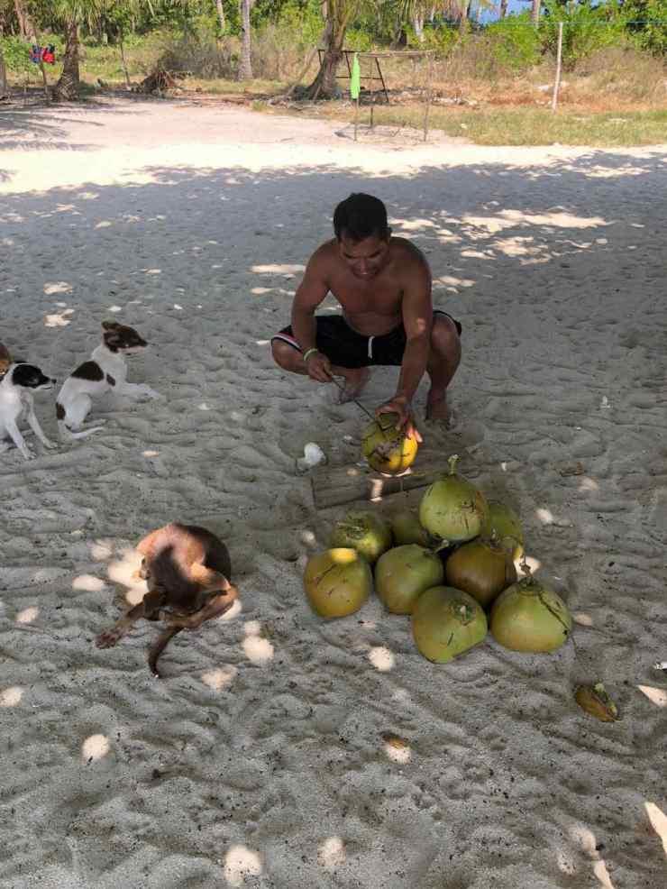 Apéro Coco sur notre ile déserte - Palawan - Philippines