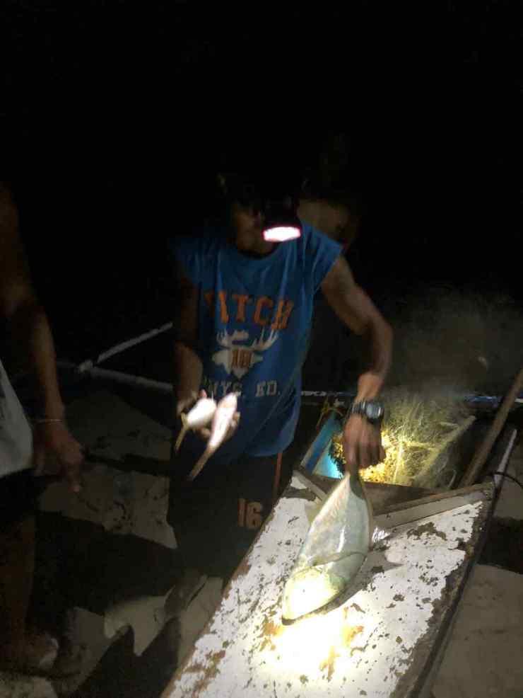 Poisson ultra frais - Palawan - Philippines