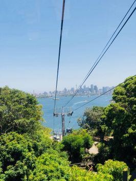 Le funiculaire du zoo de Taronga avec vue sur la City - Sydney - Australie