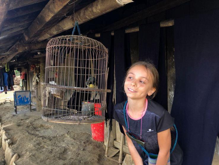 Joli Oiseau dans une maison Hmong - Sapa - Vietnam