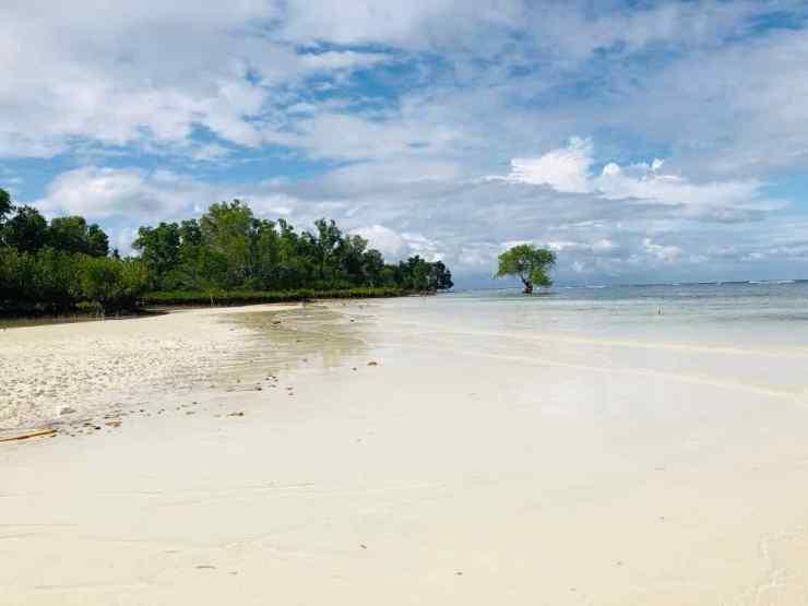 Plage déserte- Siquijor - Philippines