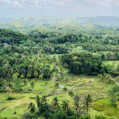 Vue sur la plaine et les Chocolate Hills - Bohol - Philippines