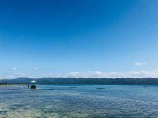 Vue sur la plage - Hotel Isla Hayahay - Pangangan Island - Bohol - Philippines
