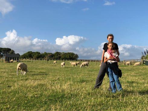 Moutons Néozélandais ! - Ambury Regional Park - Nouvelle Zélande