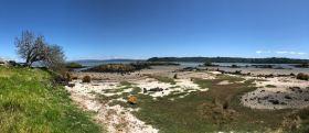 Paysage de lave - Ambury Regional Park - Nouvelle-Zélande