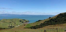En chemin.. - Coromandel - Nouvelle Zélande