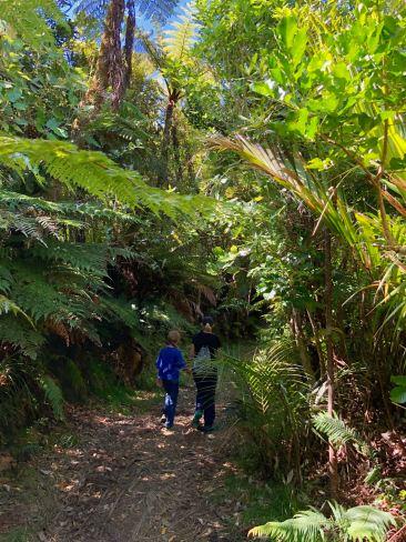 Sur la trace des chercheurs d'or - Coromandel - Nouvelle Zélande