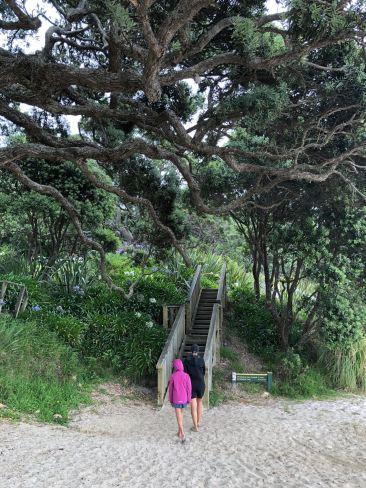 Début de la balade vers Cathedral Cove - Coromandel - Nouvelle Zélande