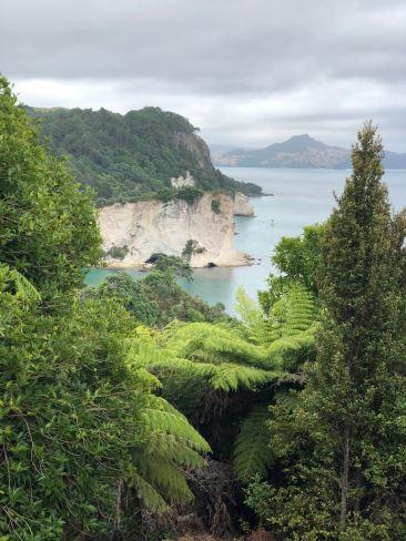 Balade vers Cathedral Cove - Coromandel - Nouvelle Zélande