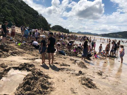 Dubitatives devant Hot Water Beach - Coromandel - Nouvelle Zélande