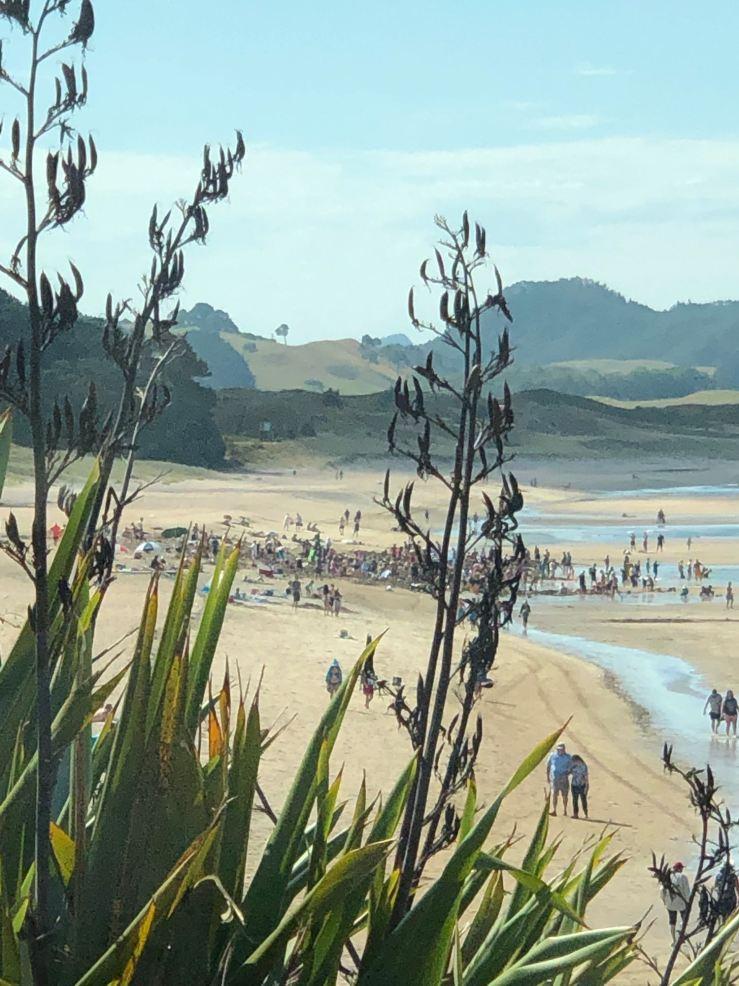 Hot Water Beach - Coromandel - Nouvelle-Zélande