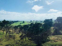 Paysage de la Comté- Avant d'arriver à Hobbiton - Nouvelle-Zélande