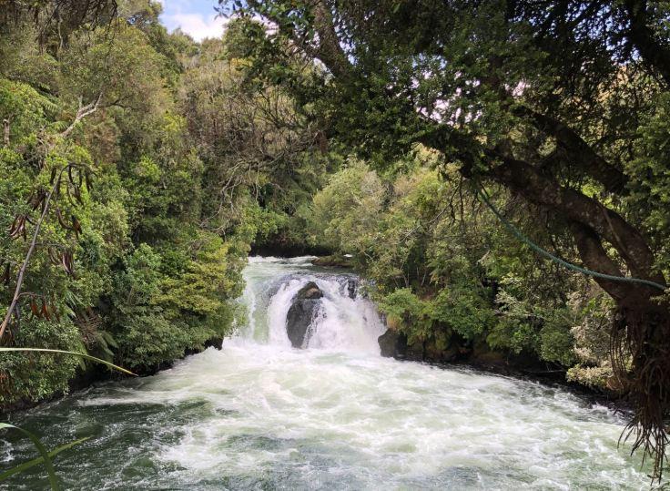 Okere Falls - Roturoa - Nouvelle-Zélande