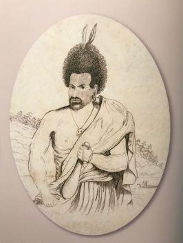 Fier Maori tel que les premiers Européens les ont découverts - Musée d'Auckland - Nouvelle Zélande