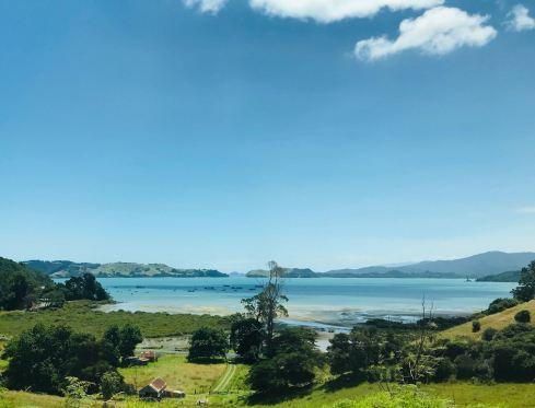 Sur la route - Coromandel - Nouvelle Zélande