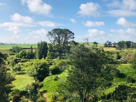 La Comté - Hobbiton - Nouvelle-Zélande