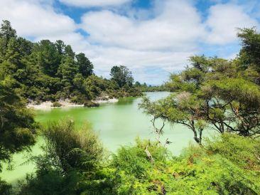 Grand lac vert - Wai O Tapu -Nouvelle-Zélande