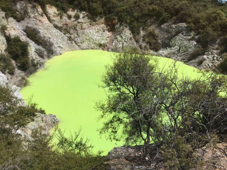 Piscine Vert Fluo - Wai O Tapu - Nouvelle-Zélande
