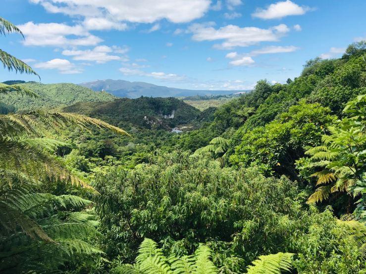 Wanganui Volcanic Valley, Fumante - Nouvelle-Zélande