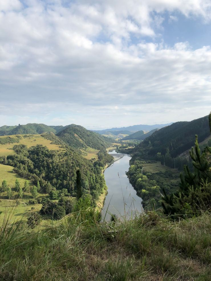Vue sur la Whanganui River - Nouvelle-Zélande