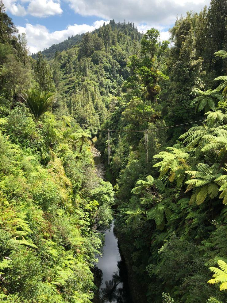 Whanganui River - Nouvelle-Zélande