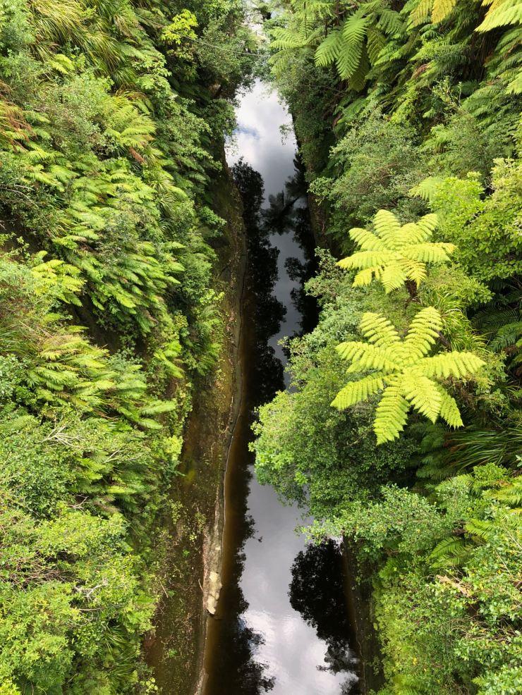 Whanganui River vue d'en haut - Nouvelle-Zélande