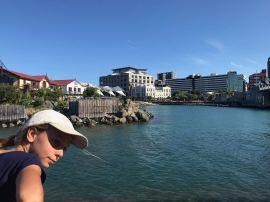 """Le """"Lagon"""" de Wellington - Nouvelle-Zélande"""
