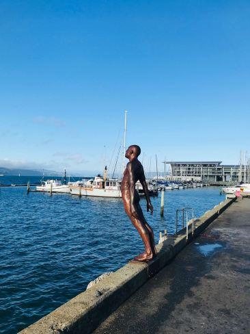 Plongera - Plongera pas ? Oeuvre d'art sur le port de Wellington - Nouvelle-Zélande